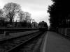 Vozi me vlak v širjave