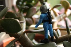 Roki Modri je pogumno zagazil v goščavje.